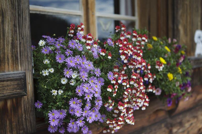 Download Blommaordningar arkivfoto. Bild av vandring, deco, berg - 27286220