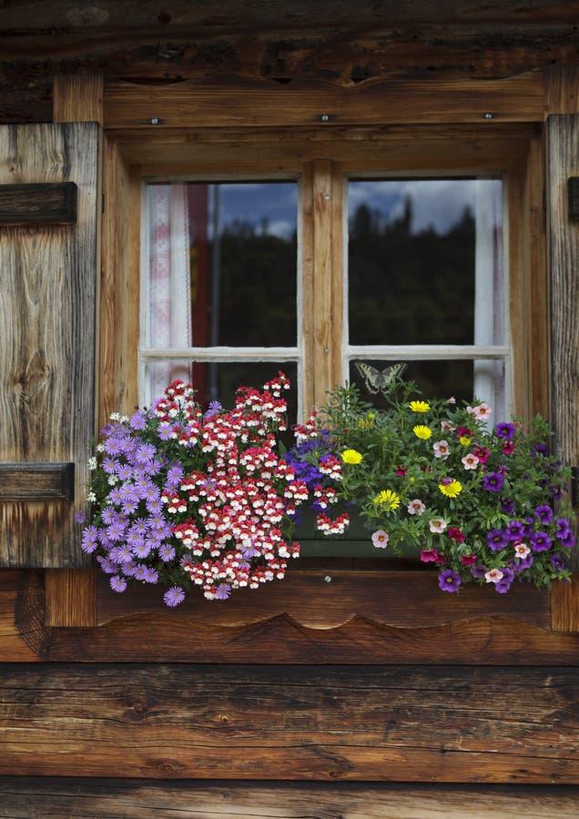 Download Blommaordningar arkivfoto. Bild av restaurang, alpin - 27286228