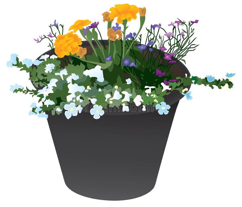 BlommaPlanter med åtskilliga variationer royaltyfri illustrationer