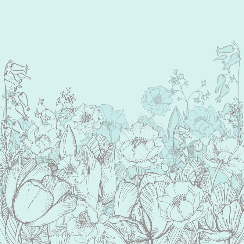 Blommar blom- bakgrund för vektorelegans med den grafiska våren vektor illustrationer