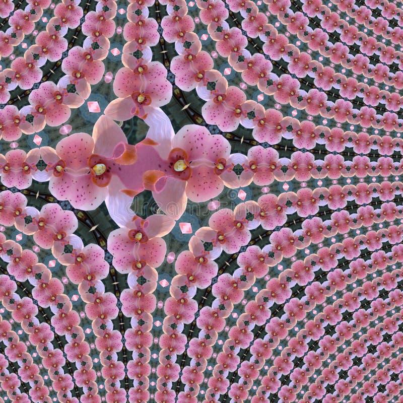 Blommar den diagonala orkidén för fractalen linjer och fyrkanten, modellen från tegelplattor och gränsen i rosa ans-lilas för ban royaltyfri illustrationer