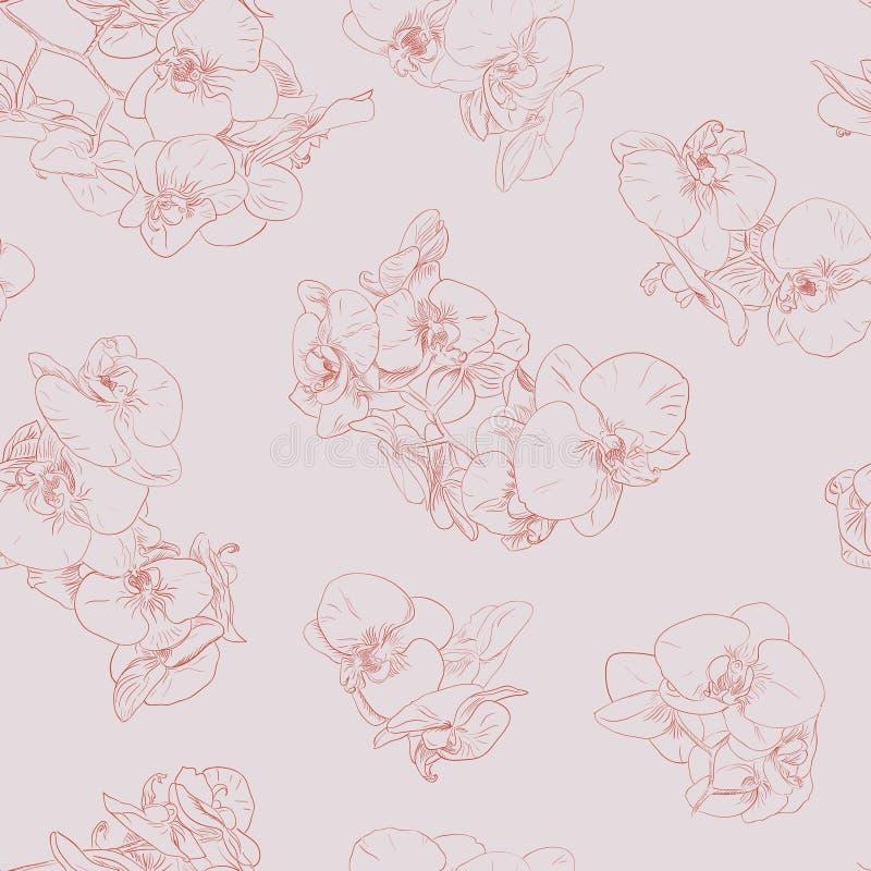 Blommar den sömlösa modellbakgrundslinjen illustrationorkidér blom- designelement stock illustrationer