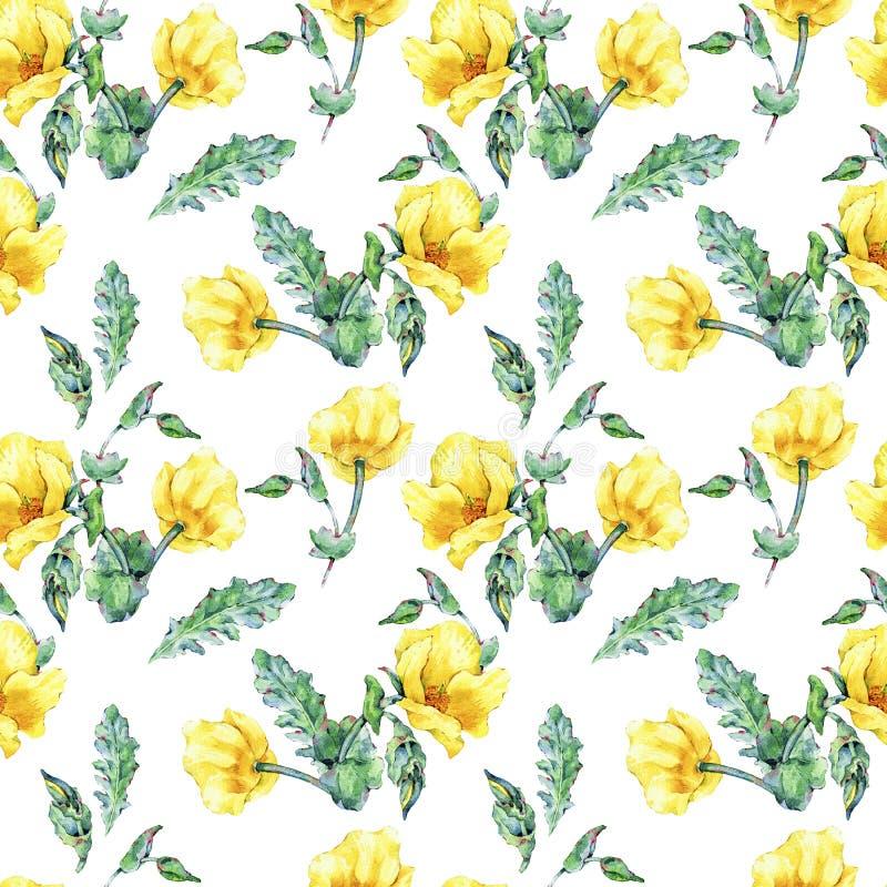 Blommar den sömlösa modellen för vattenfärgsommar av guling för den Horned vallmo royaltyfri illustrationer