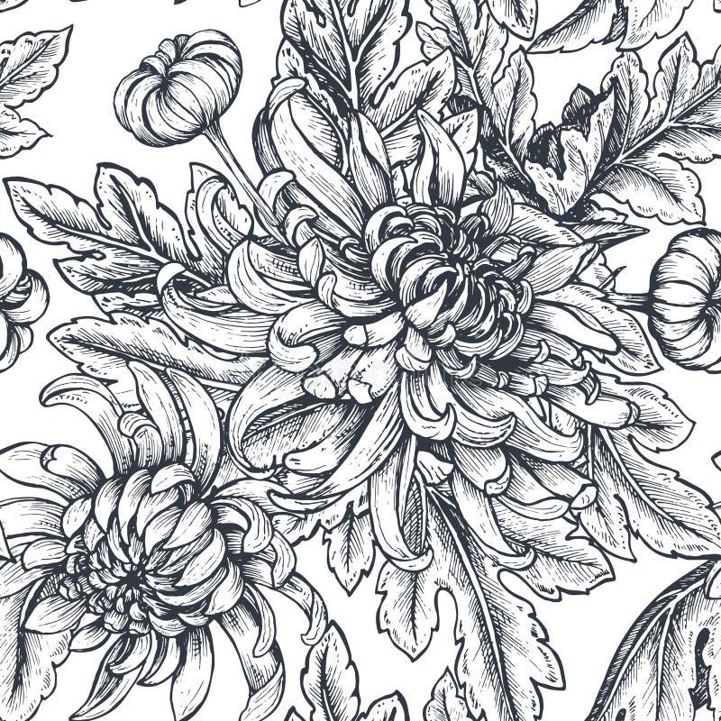Blommar den sömlösa modellen för vektorn med handen drog krysantemumet royaltyfri illustrationer