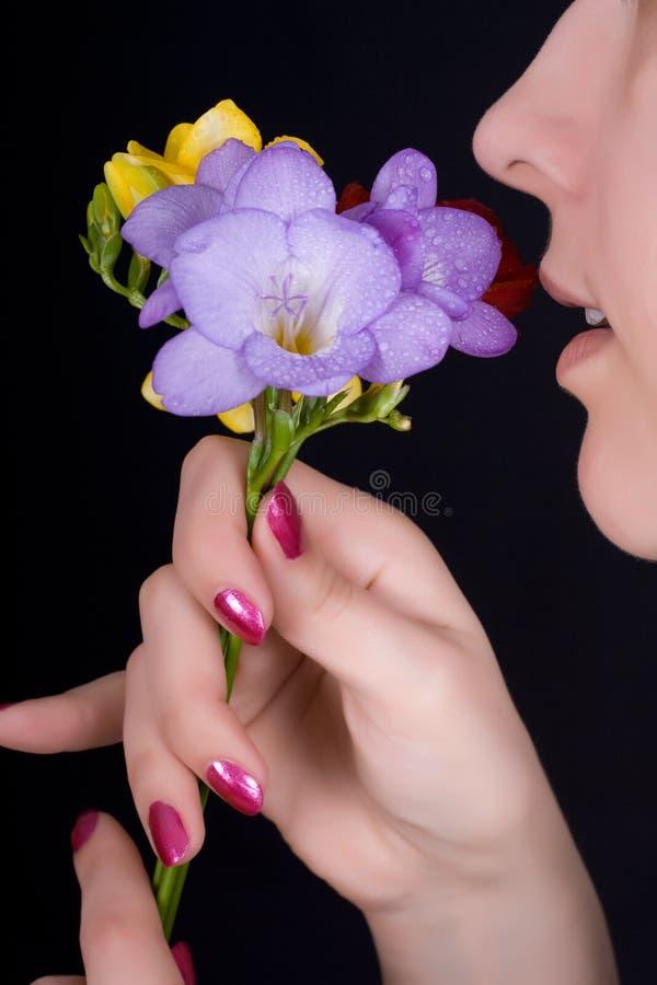 blommar den sniffa kvinnan för freesia royaltyfria foton