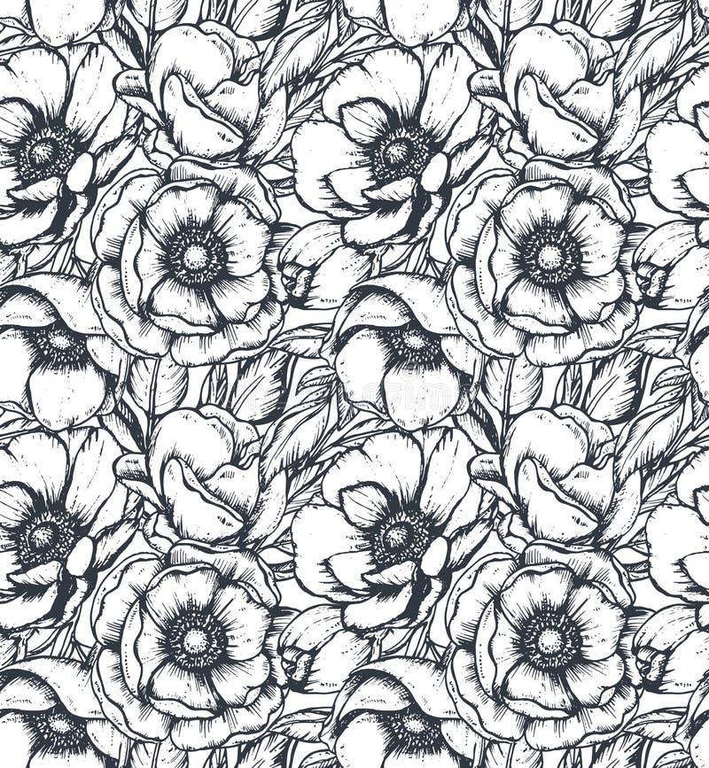 Blommar den svartvita sömlösa modellen för vektorn med handen drog anemonen royaltyfri illustrationer