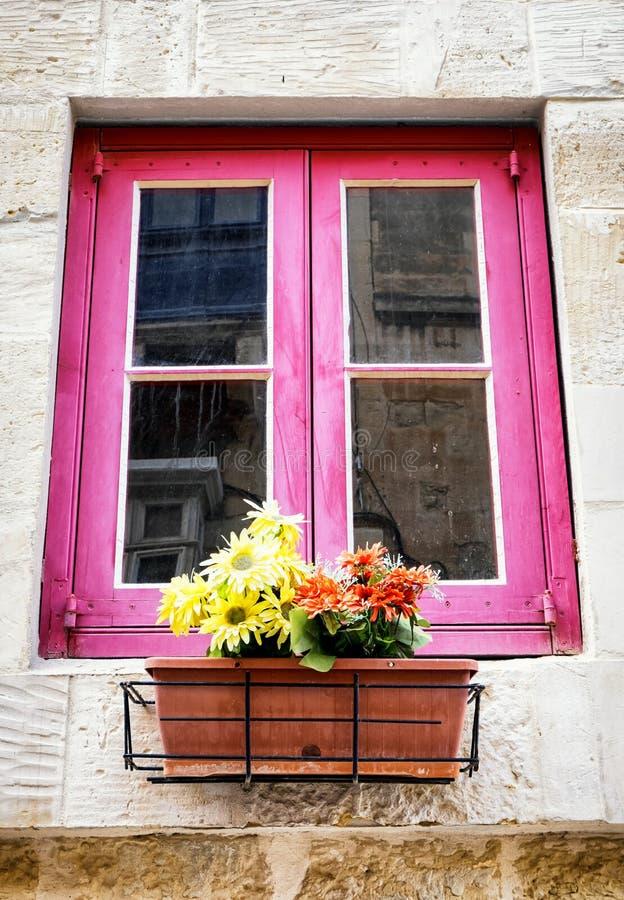 blommar det gammala fönstret royaltyfria foton
