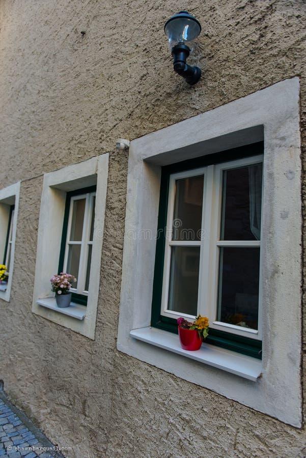 blommar fönsterbräda royaltyfri foto