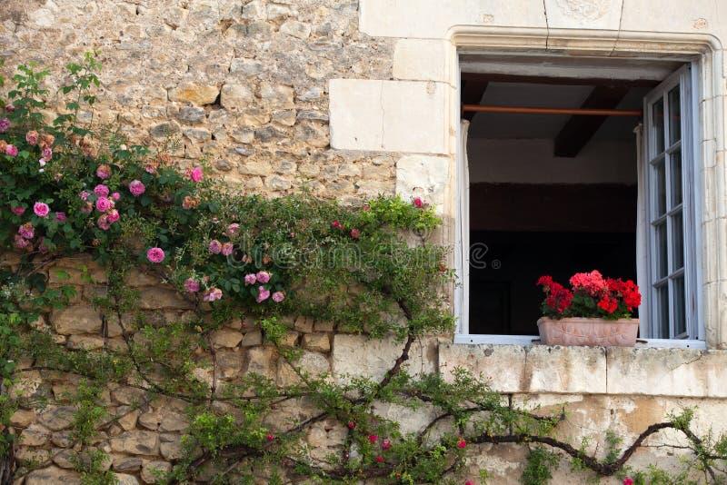 blommar fönstret fotografering för bildbyråer