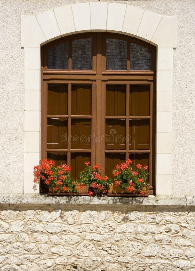 blommar fönstret arkivbild