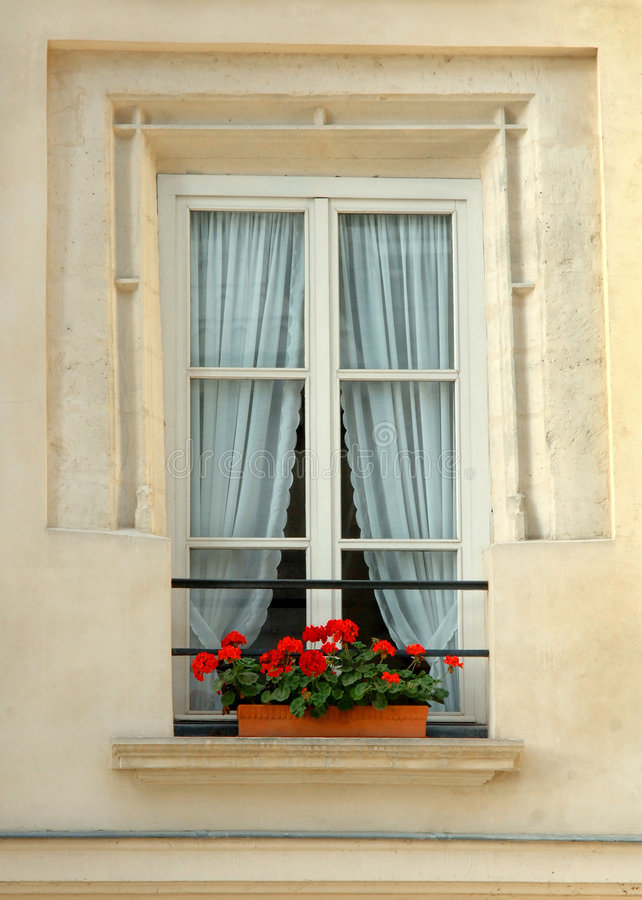 blommar fönstret arkivfoto