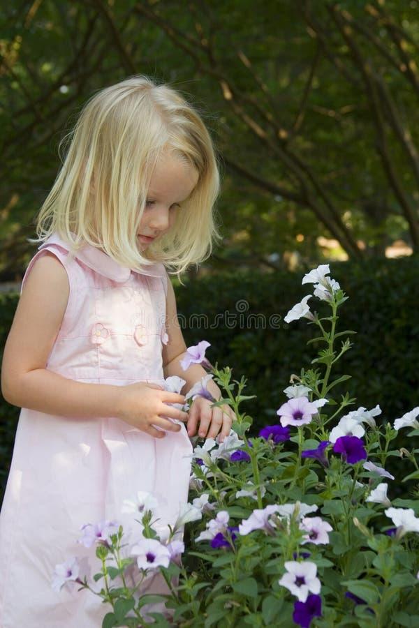 blommar flickan little val arkivbilder