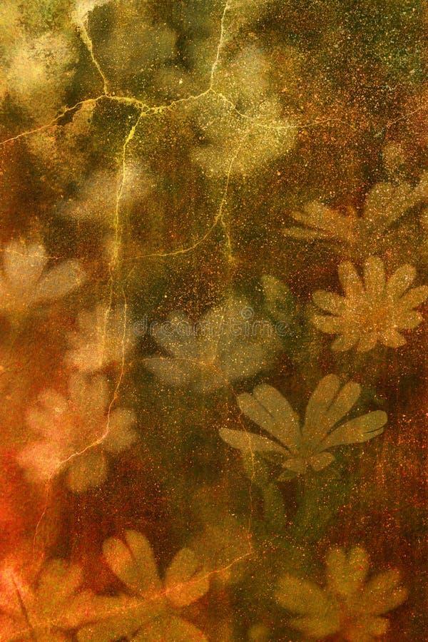 blommar grunge fotografering för bildbyråer