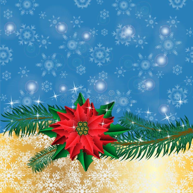 Blommar guld- bakgrund för jul med julstjärnan, och gran förgrena sig royaltyfri illustrationer