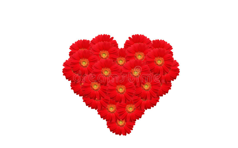 blommar hjärta royaltyfria foton