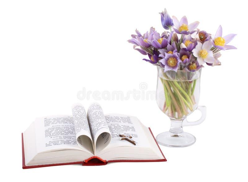 blommar holybookfjädern royaltyfria foton