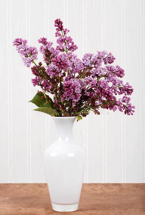blommar lila vasewhite arkivbilder