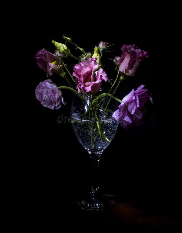 blommar livstid fortfarande fotografering för bildbyråer