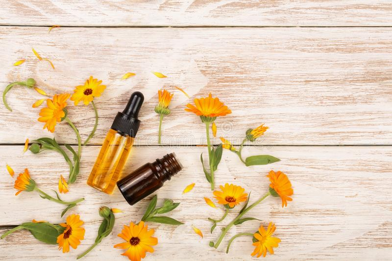 Blommar nödvändig olja för aromatherapyen med ringblomman på vit bakgrund med kopieringsutrymme för din text Top beskådar arkivbild