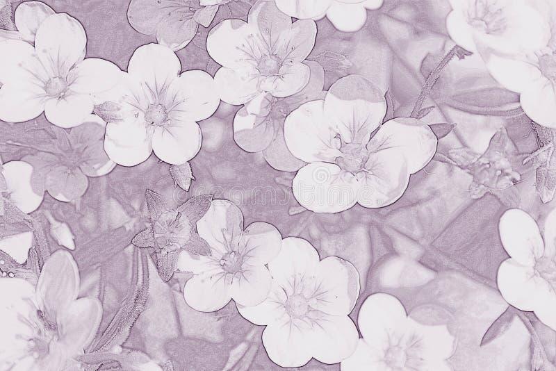 Blommar purpurf?rgad bakgrund stock illustrationer