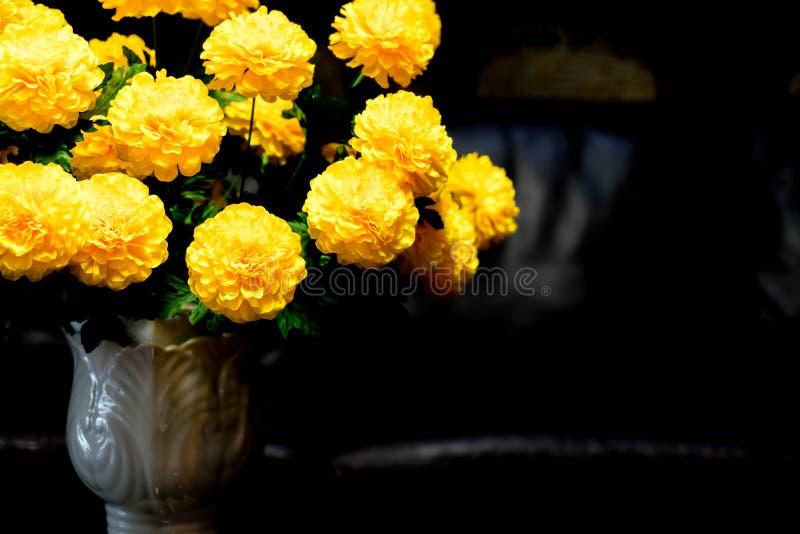 blommar ringblommavasen royaltyfria foton