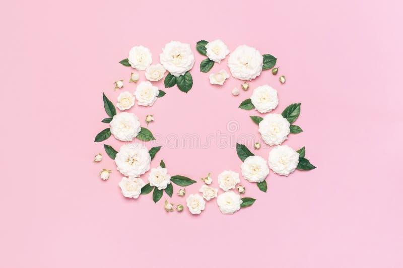 Blommar sammans?ttning Ram i form av cirkeln av vita nya rosor och gröna sidor på försiktig rosa bakgrund Lekmanna- l?genhet, ?ve arkivbild