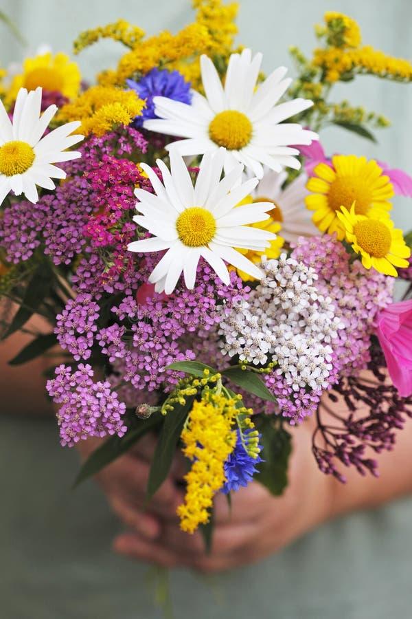 Download Blommar sommar arkivfoto. Bild av blomma, händer, ordnings - 19798040