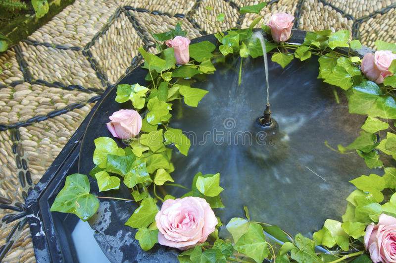 blommar springbrunnen royaltyfri bild