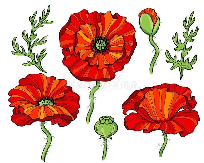 blommar vallmored royaltyfri illustrationer