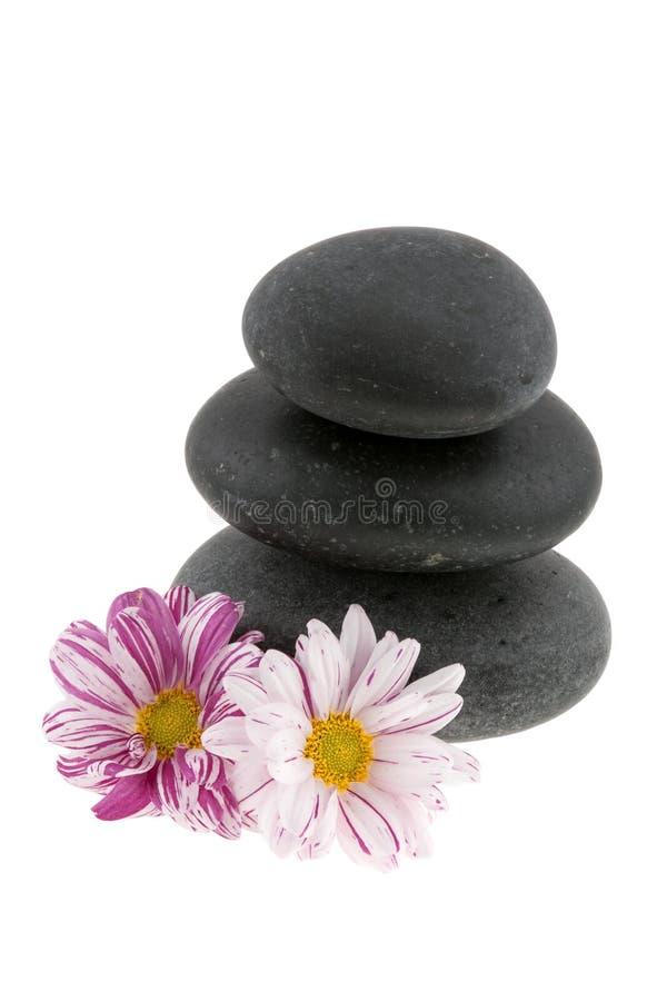 blommar varma stenar fotografering för bildbyråer