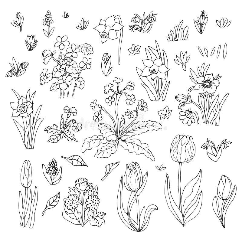 Blommasamlingsuppsättning hälsning för kortdesign Gullig blom- ca stock illustrationer