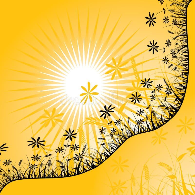 blommasolnedgångvektor vektor illustrationer