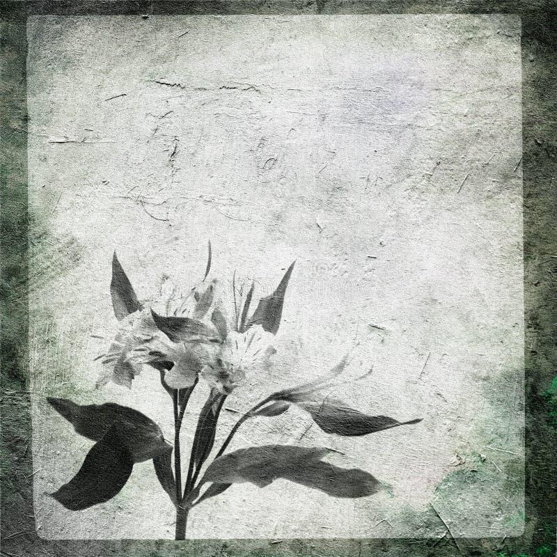 blommasten stock illustrationer