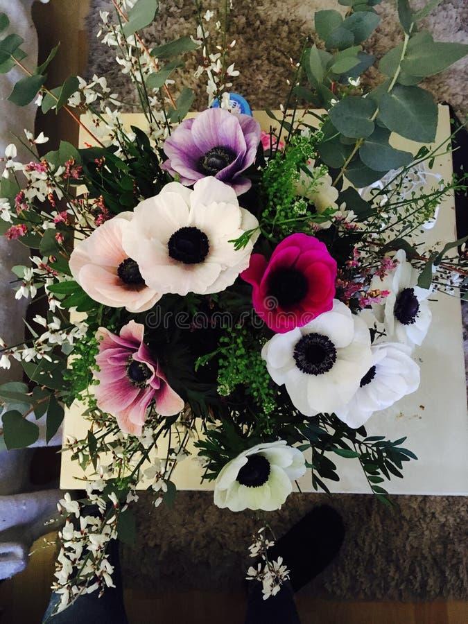 Blommatabellförälskelse royaltyfri foto