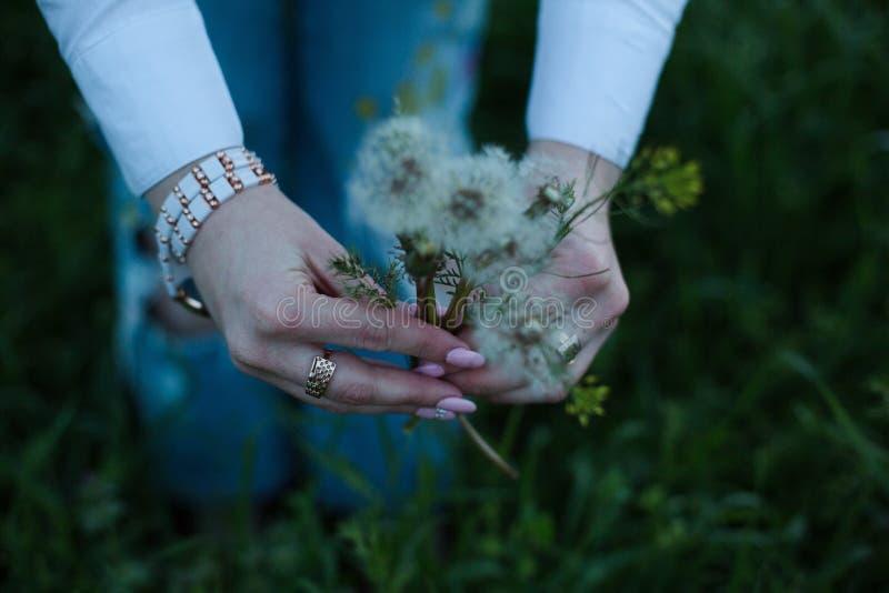 Blommatid arkivfoto