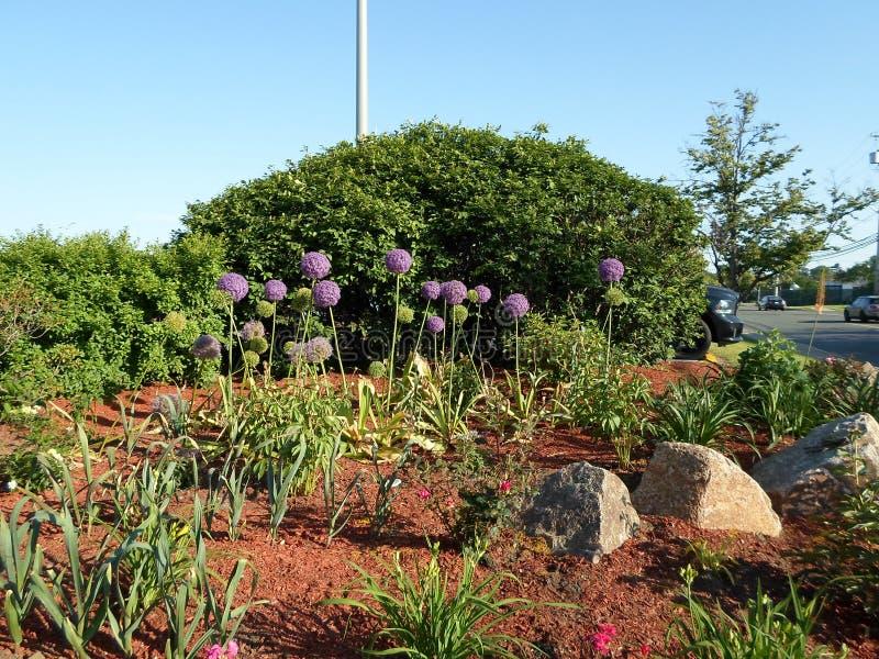 Blommaträdgård, Townline Plaza, Malden, Massachusetts, USA arkivfoto
