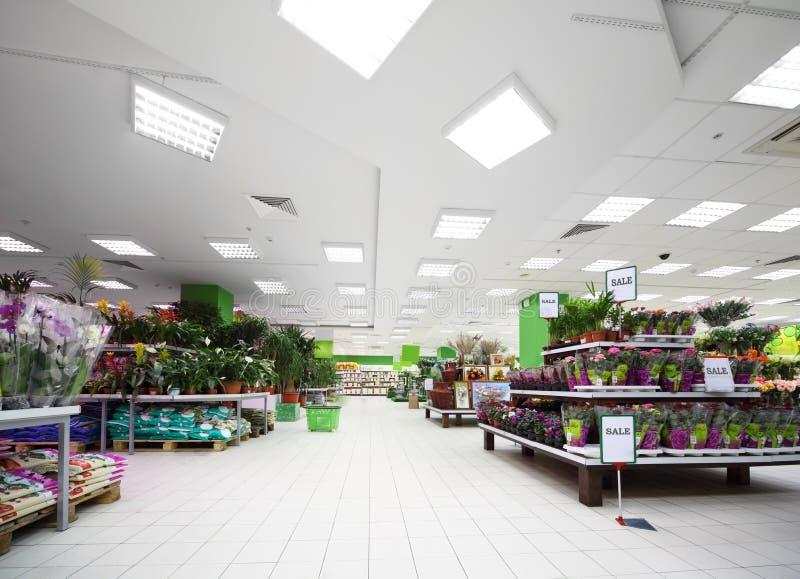 blommaväxtkrukmakeri shelves variation fotografering för bildbyråer
