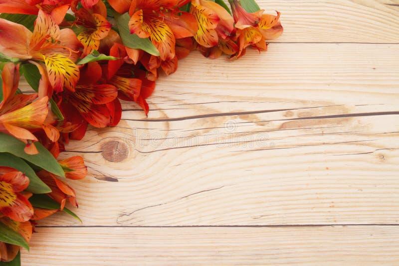 Blommavårbakgrund arkivbild