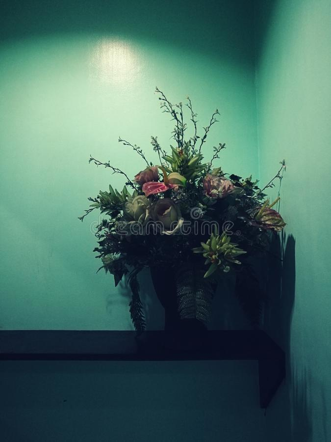 blommavas arkivfoto