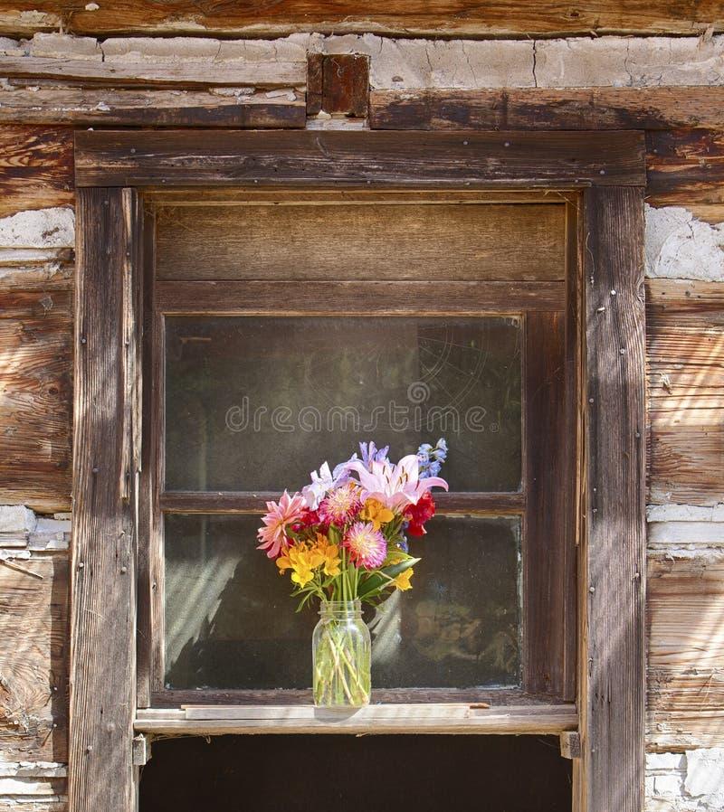 Blommavas i fönster arkivbild