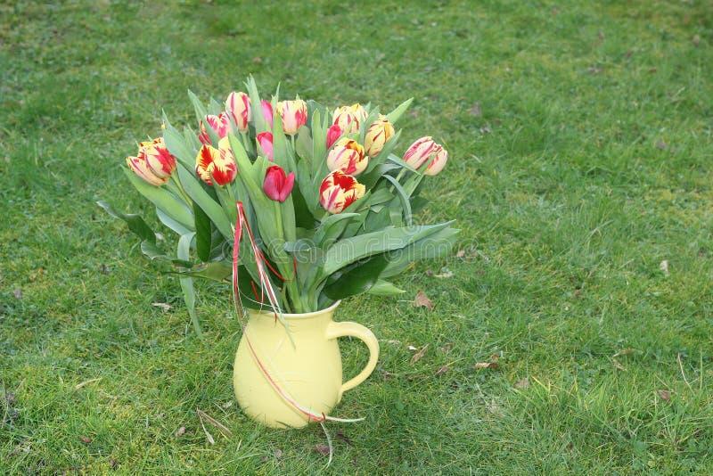 Blommavas med tulpan, på gräsplan royaltyfria bilder