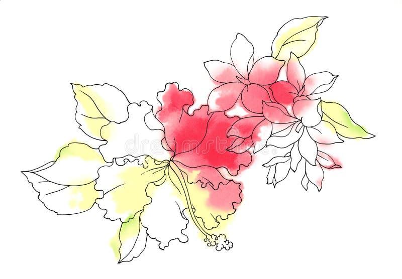 blommavattenfärg stock illustrationer