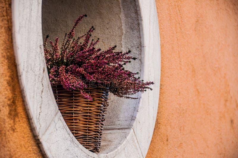 Download Blommor fotografering för bildbyråer. Bild av korgar - 37348247