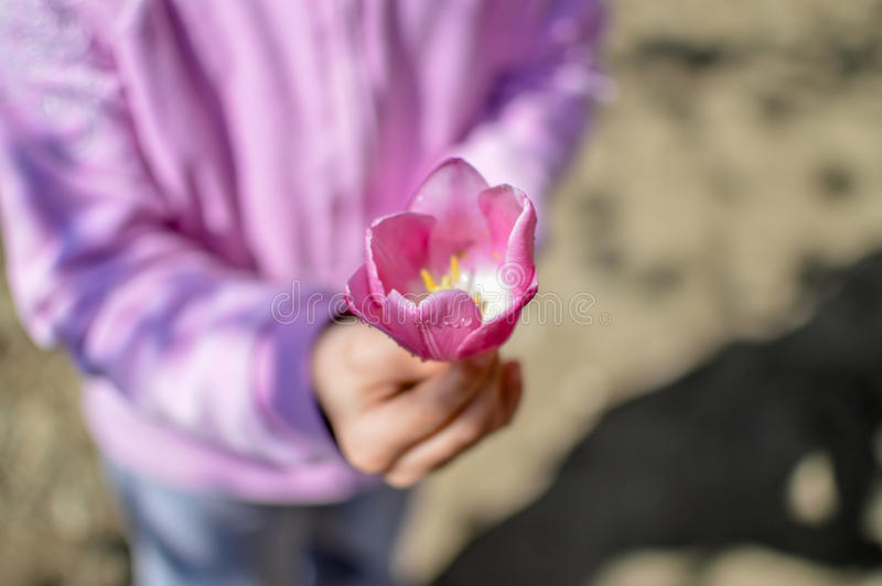 Barn med blomman royaltyfri bild