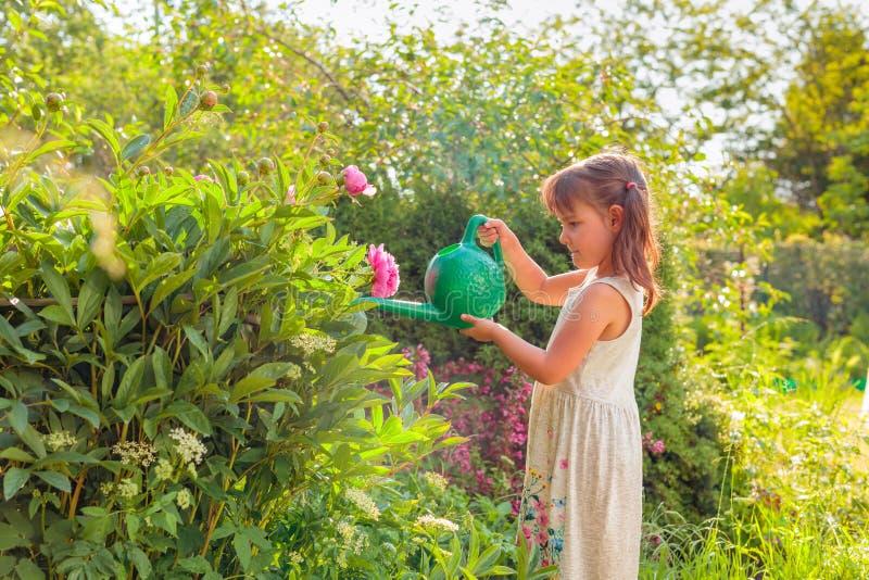 blommor arbeta i tr?dg?rden flickan little som bevattnar arkivbilder