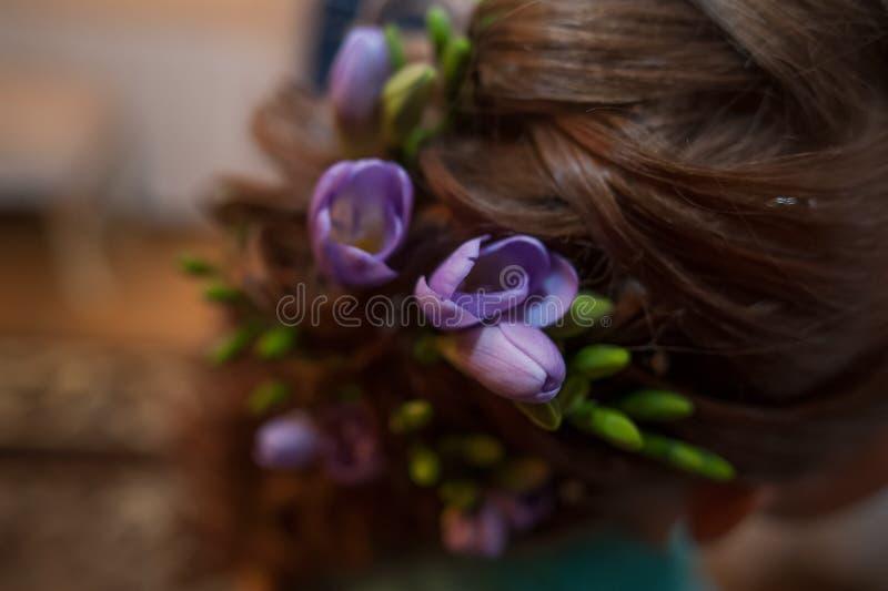 Blommor av lila freesia i håret för brud` s royaltyfri bild