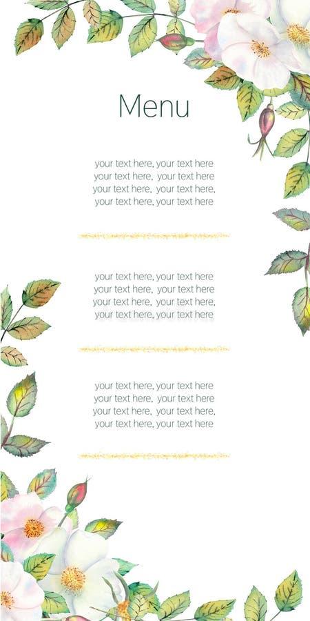 Blommor av vita rosa höfter, röda frukter, gröna sidor, sammansättningen i en geometrisk guld- ram Blommaaffisch, inbjudan vektor illustrationer