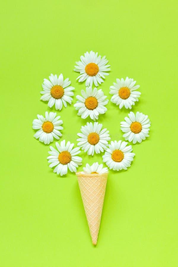 Blommor för bukettkamomilltusenskönor i dillandeglasskotte på den pastellfärgade för pappersbakgrund för grön färg mallen för vyk royaltyfria bilder