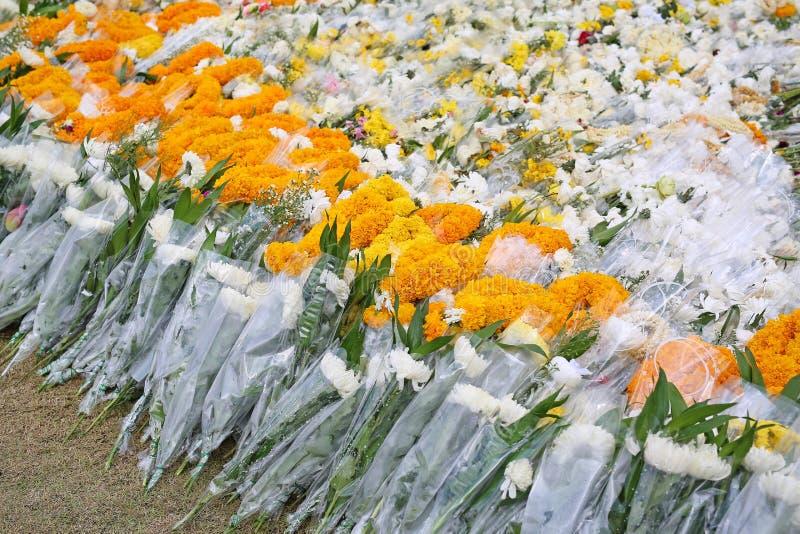 Blommor för dyrkanbruk för ber arkivfoton
