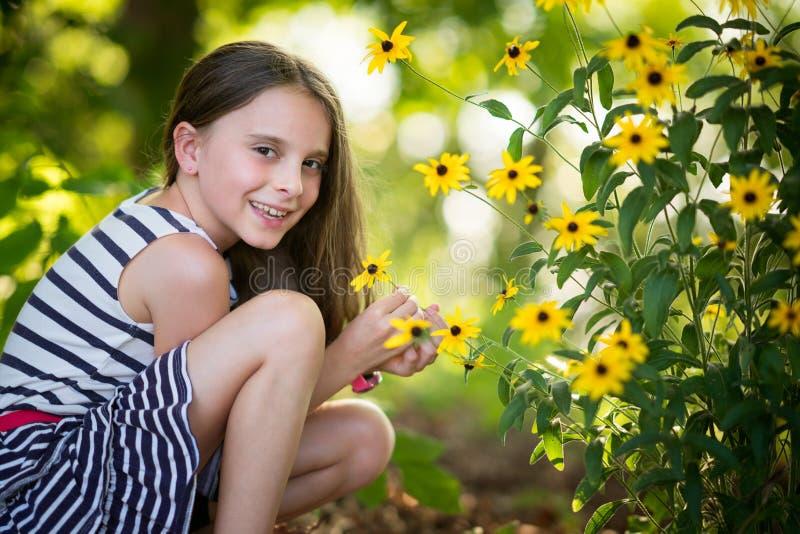 Blommor för Littl flickaplockning arkivfoton